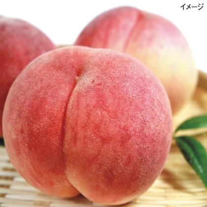 <※お中元対象商品>旬の桃