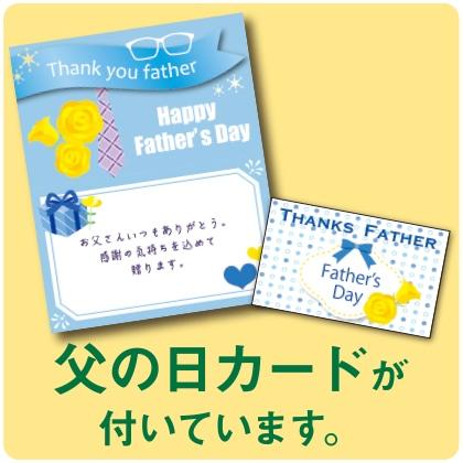 〈※父の日対象商品〉五割そば