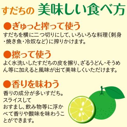 すだち(青果) (500g×2)×2