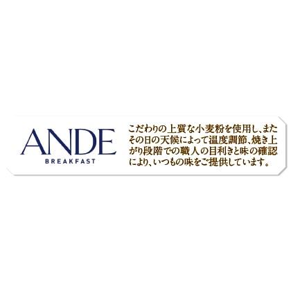 <ANDE>人気のデニッシュ3種セット
