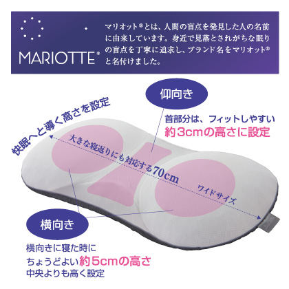 マリオット枕+プラチナコットンの専用枕カバー同色2枚セット(シャンパンゴールド)