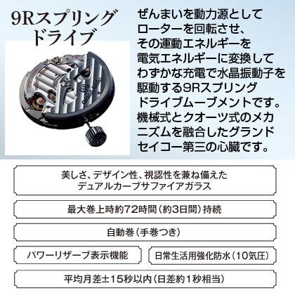 〈グランドセイコー〉スプリングドライブ メンズウォッチ(16.5cm)
