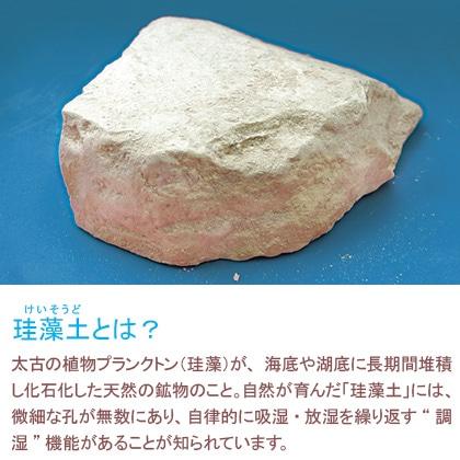 珪藻土 足快シューズドライ1足分(ソールタイプ)