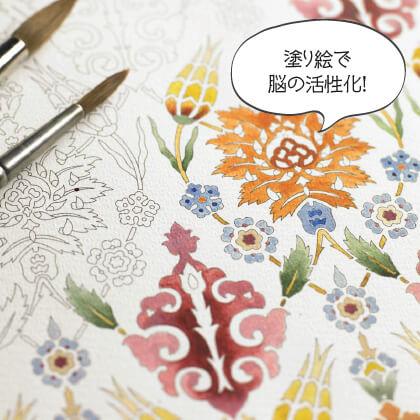 大人の塗り絵 カラーリングブック&ポストカードブック(ターキッシュ&アールヌーヴォ)