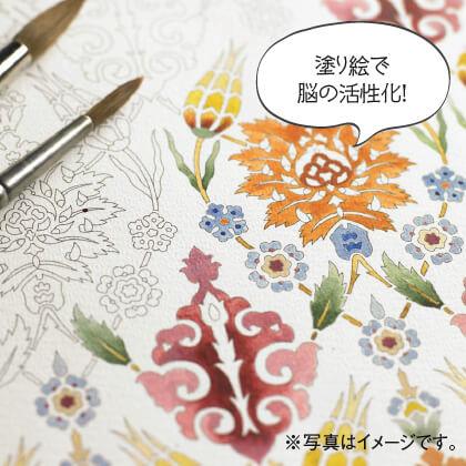大人の塗り絵 カラーリングブック&ポストカードブック(ブーケ&ターキッシュ)