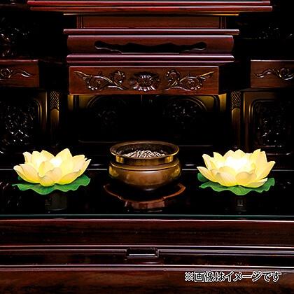 光る蓮の花(虹色)