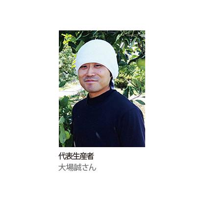 [山形の極み] 山形県東根市神町産 佐藤錦