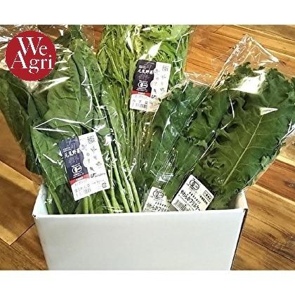 [定期購入]オーガニック グリーンスムージーセット