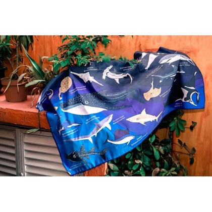 【OCEANARIUM】ドライタオル T02 Sharks identification  80cm x 140cm