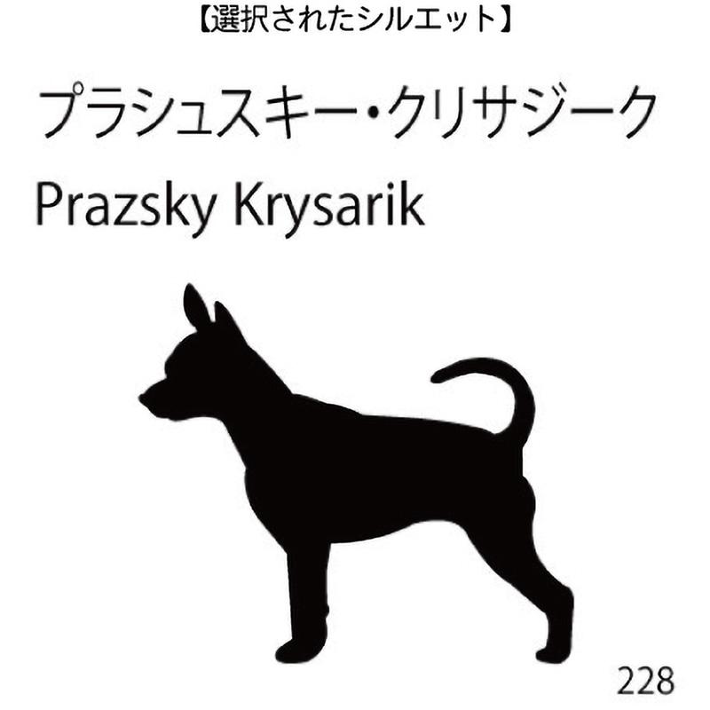 お名前スタンプ プラシュスキー・クリサジーク(228)