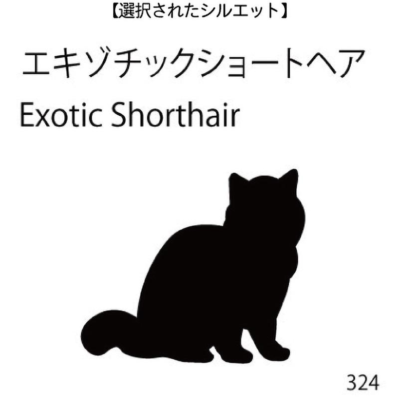 お名前スタンプ エキゾチックショートヘア(324)