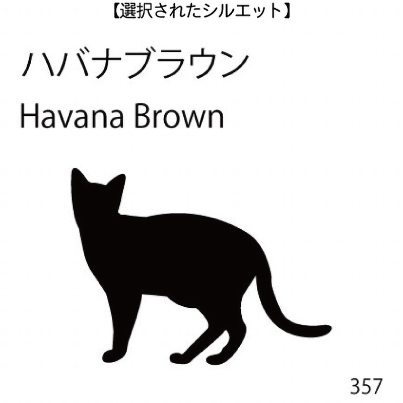 お名前スタンプ ハバナブラウン(357)