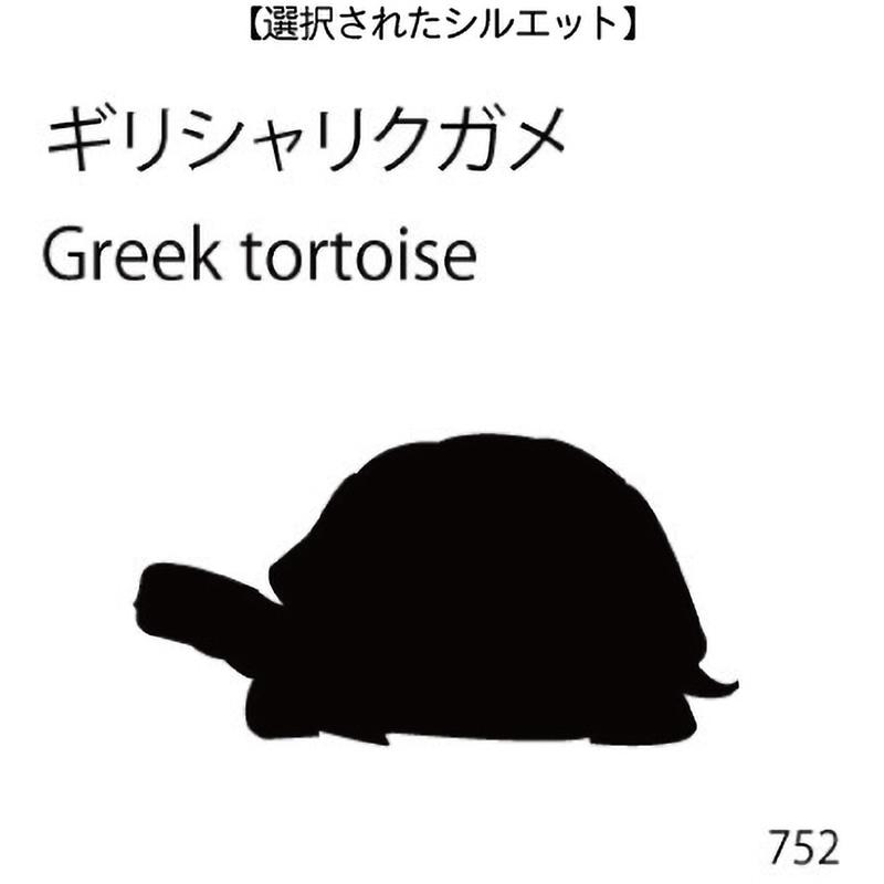 お名前スタンプ ギリシャリクガメ(752)