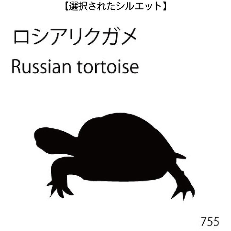 お名前スタンプ ロシアリクガメ(755)