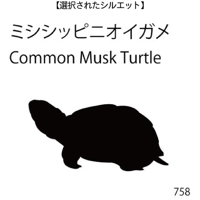 お名前スタンプ ミシシッピニオイガメ(758)