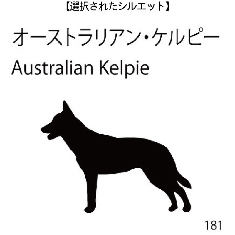 ドアオープナー オーストラリアン・ケルピー(181)