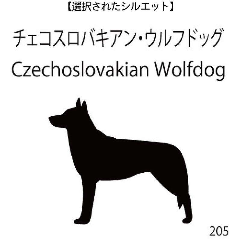 ドアオープナー チェコスロバキアン・ウルフドッグ(205)