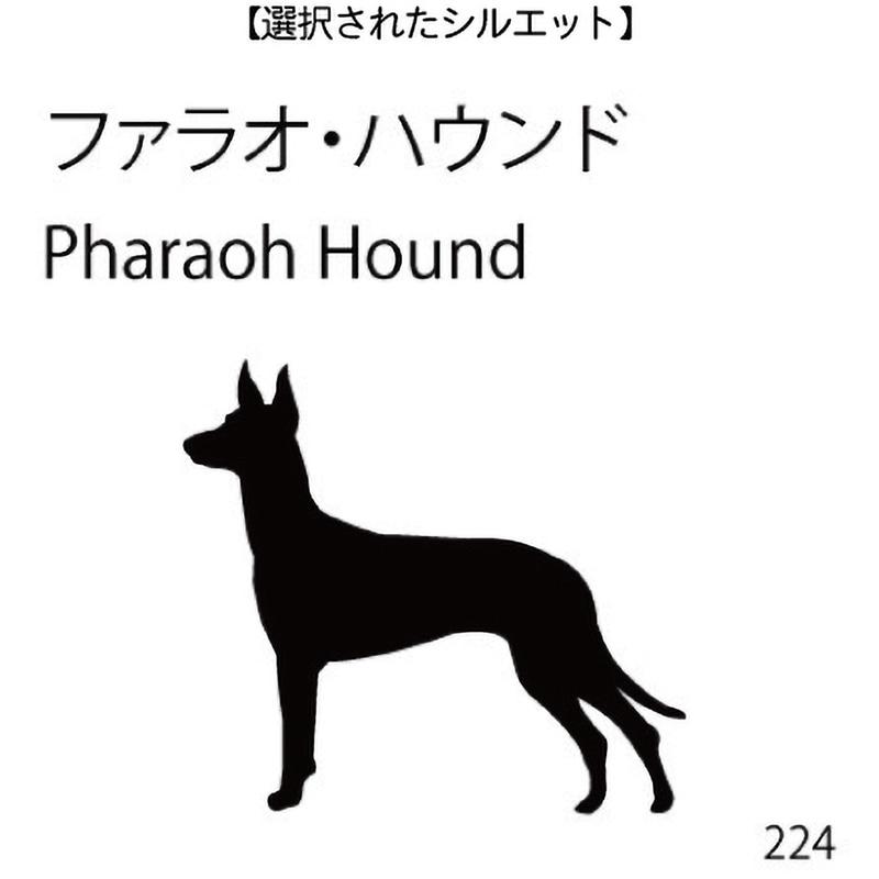 ドアオープナー ファラオ・ハウンド(224)