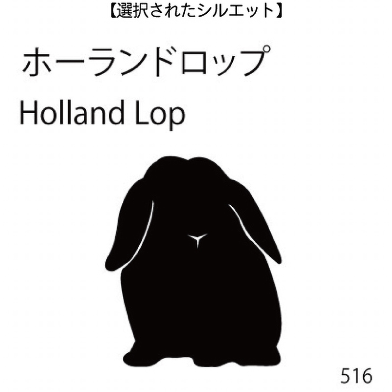 ドアオープナー ホーランドロップ(516)