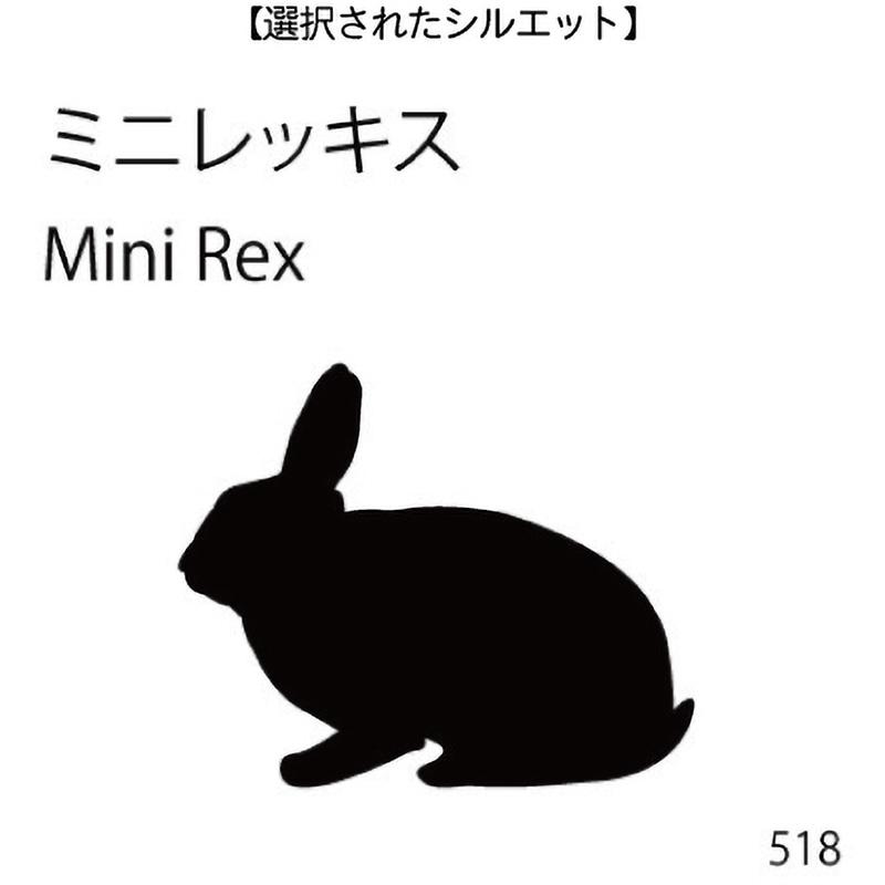 ドアオープナー ミニレッキス(518)