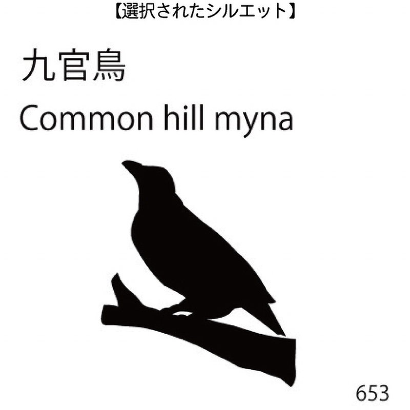 ドアオープナー 九官鳥(653)