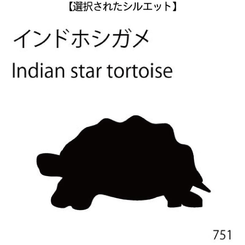 ドアオープナー インドホシガメ(751)