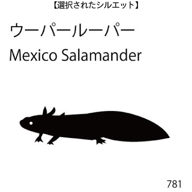ドアオープナー ウーパールーパー(781)
