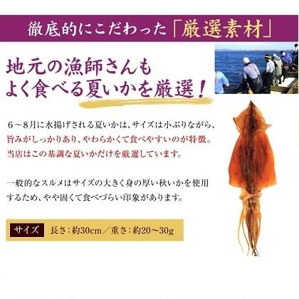 北海道産 無添加スルメ 4枚入 ib-018