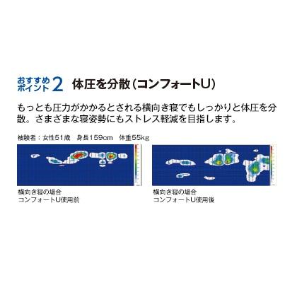 フォスフレイクス枕 スタンダード(カバー無/43×63cm)