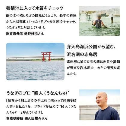三ヶ日みかん配合 浜名湖うなぎ蒲焼2本