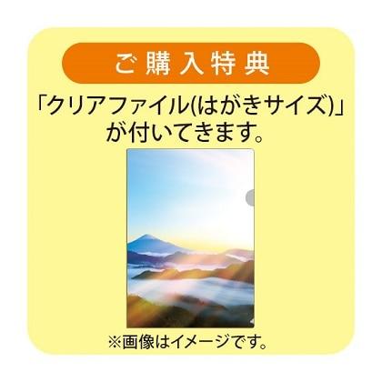 羽生結弦カレンダー(A2)