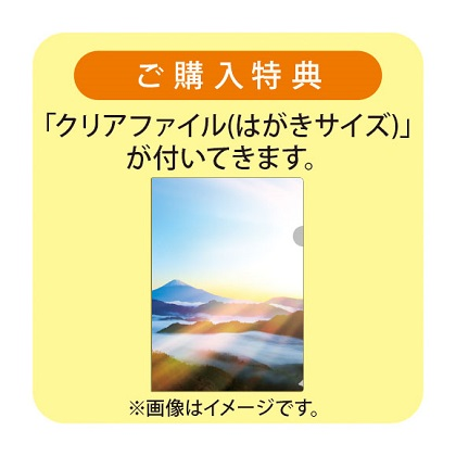 大谷翔平カレンダー(B2)