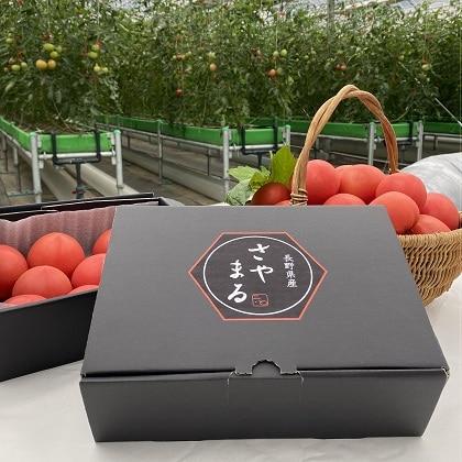 長野県産フルーツトマト「さやまる」