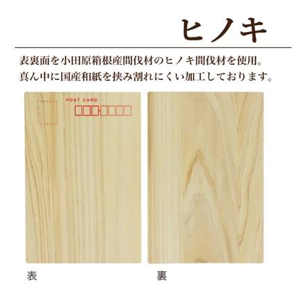 ヒノキ ポストカード 50枚セット