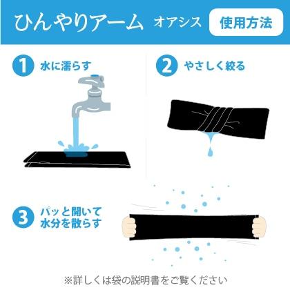 しろくまのきもちひんやりアームオアシス レギュラー 2個セット ブラック