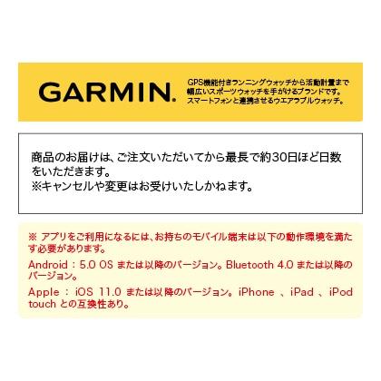 〈ガーミン〉ForeAthlete 245 ブラック