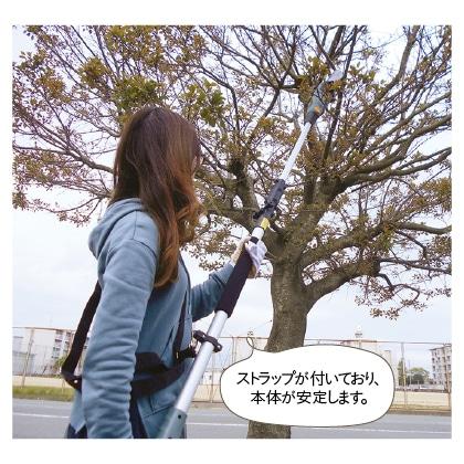 電動高枝切りチェーンソー「高枝健太郎くん」