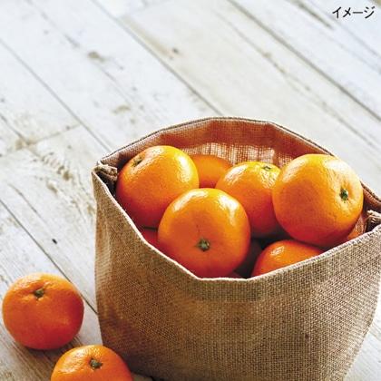 <※お中元対象商品>桃と温室みかん