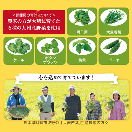 九州産野菜青汁 1箱