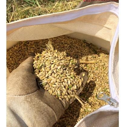 麦からつくりあげる自然栽培麦芽ビール6本