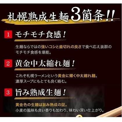ラーメン 北海道 札幌熟成生麺 5種スープ食べ比べ ib-005