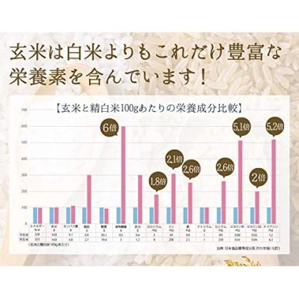 食べる米ぬか 400g(100g×4袋) 農薬化学肥料不使用 有機JAS認証 hana-012
