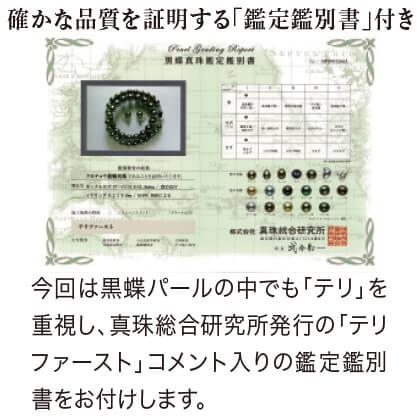 黒蝶パールネックレス&ピアスセット