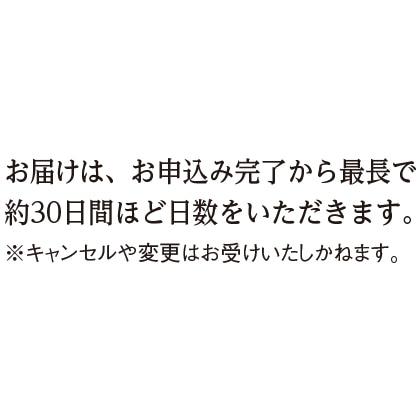 〈シチズン エクシード〉エコ・ドライブ電波腕時計(ベルト内周17.9cm)