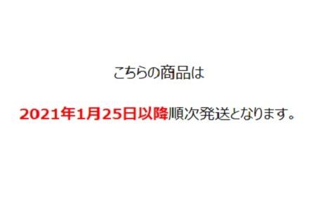 鬼滅の刃/通帳ケースB