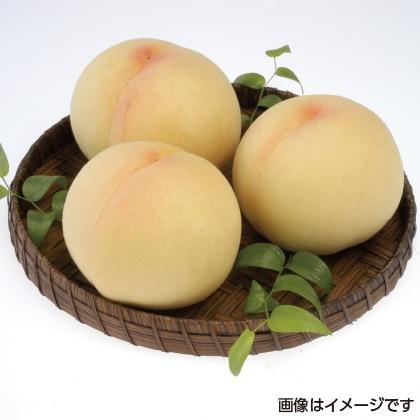 【期間限定商品】岡山白桃 2.7kg