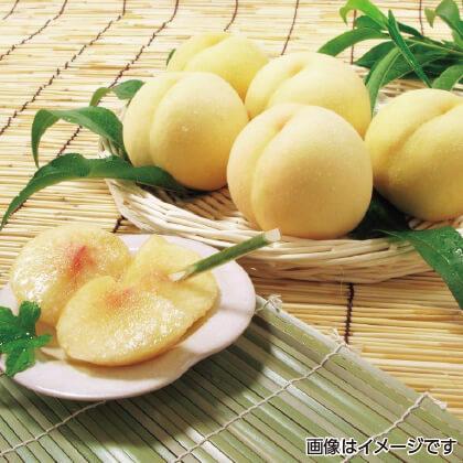 【期間限定商品】岡山白桃 2.4kg