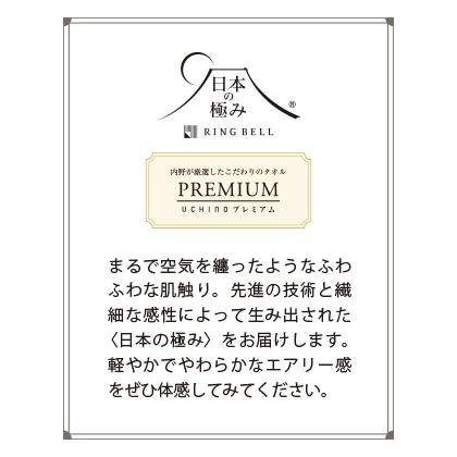 日本の極み エアーワッフル バスタオル2枚セット ホワイト【慶事用】