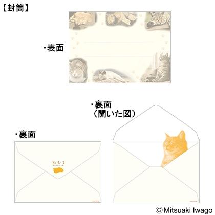 「ねむる」〜岩合光昭 ネコ便り〜