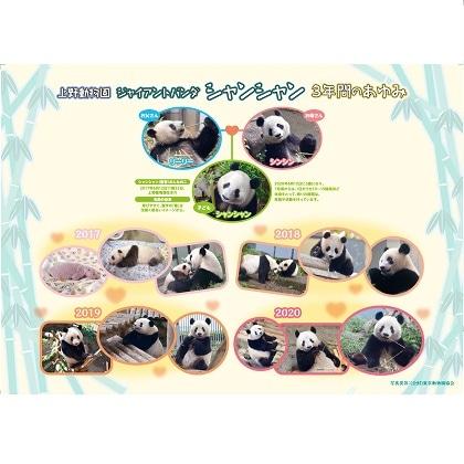 上野動物園 ジャイアントパンダ ありがとう シャンシャン